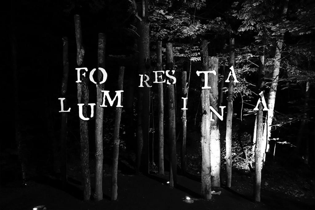 nomade-foresta-lumina-01