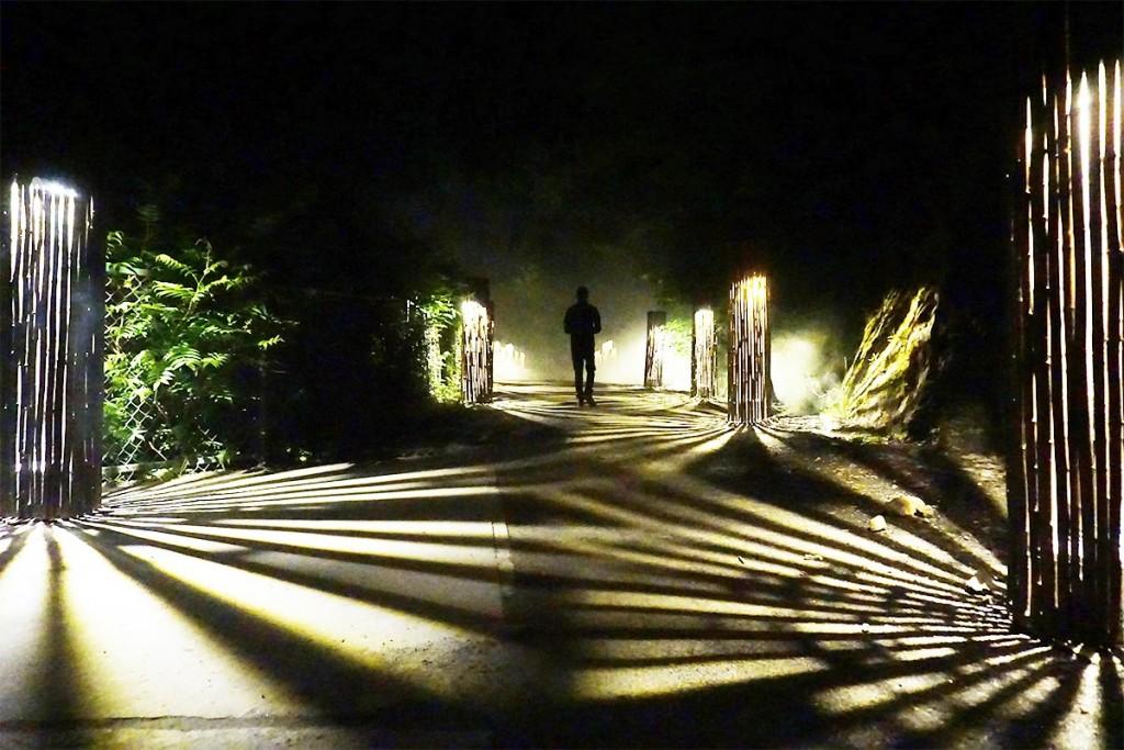 nomade-foresta-lumina-02